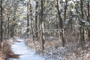 winter-wonderland2